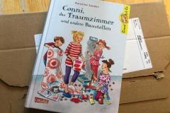 Conni & Co 15: Conni, das Traumzimmer und andere Baustellen